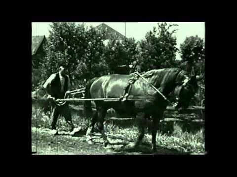 Vroeger op de boerderij - De Veluwenaar, film van 55 minuten