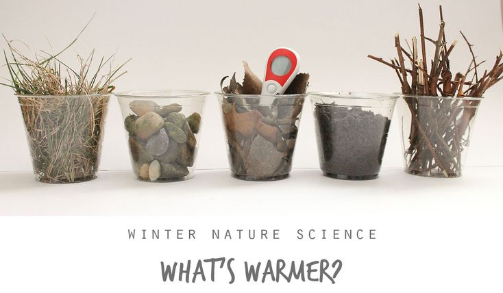 Winter Nature Science