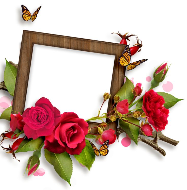 Скрапы роз для фотомонтажа