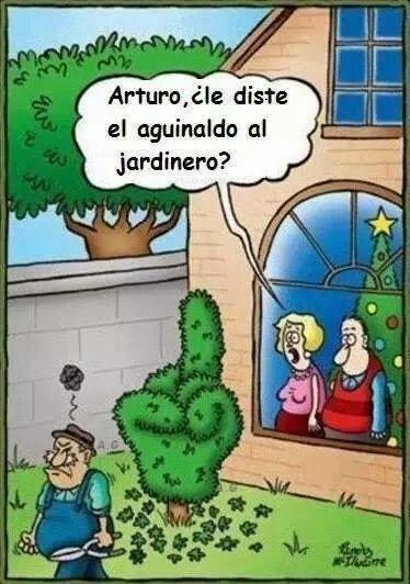 El cosmos de yoma chiste aguinaldo al jardinero humor for Jardinero definicion