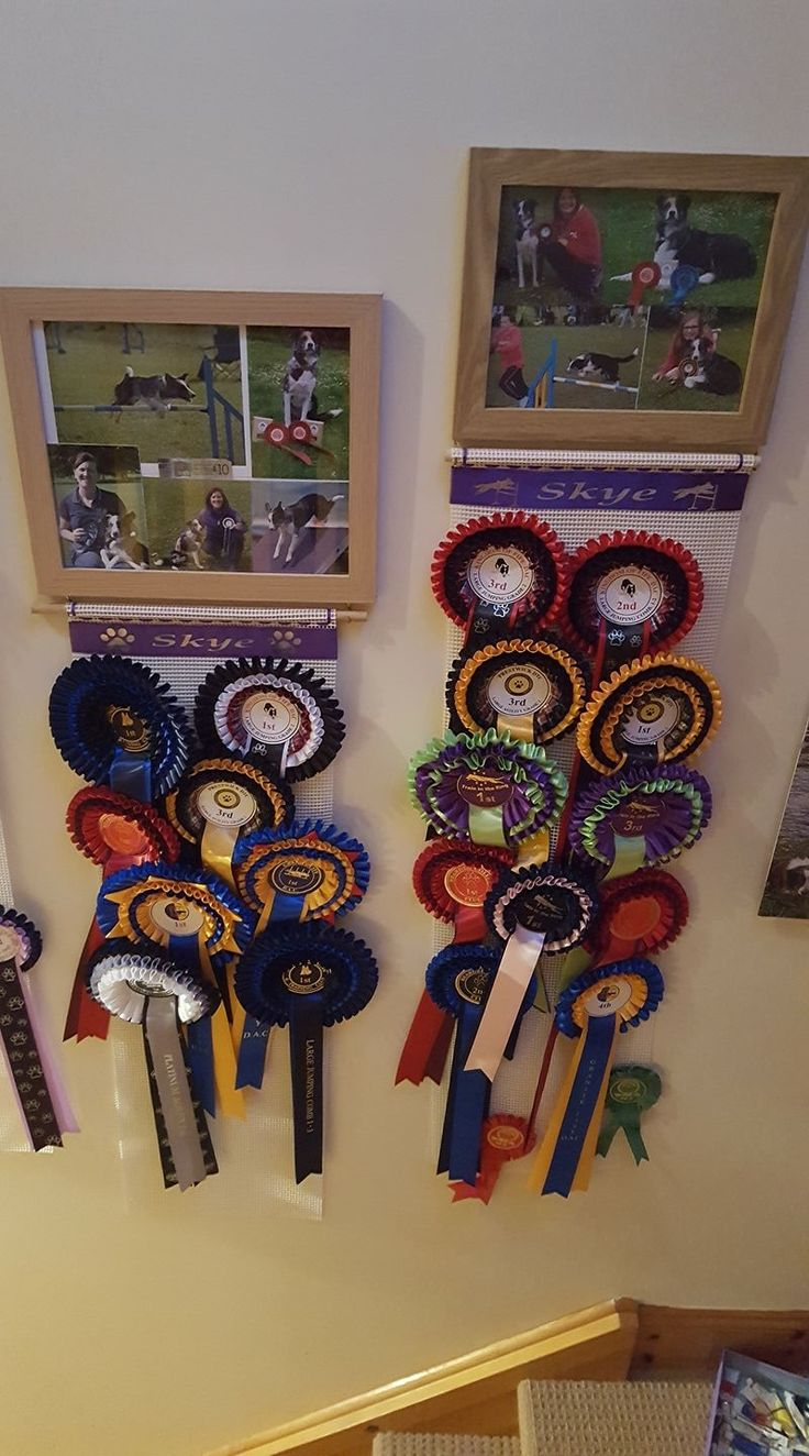 Photo Frame Rosette Holder great idea for displaying your Rosettes