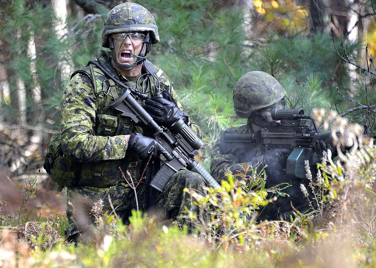 Members of the West Nova Scotia Regiment practice platoon level dismounted infantry operations and individual soldiering skills in Camp Aldershot, Nova Scotia on 18 October 2014.  Photo by: Corporal Steve Wilson, 14 AMS Wing Imaging