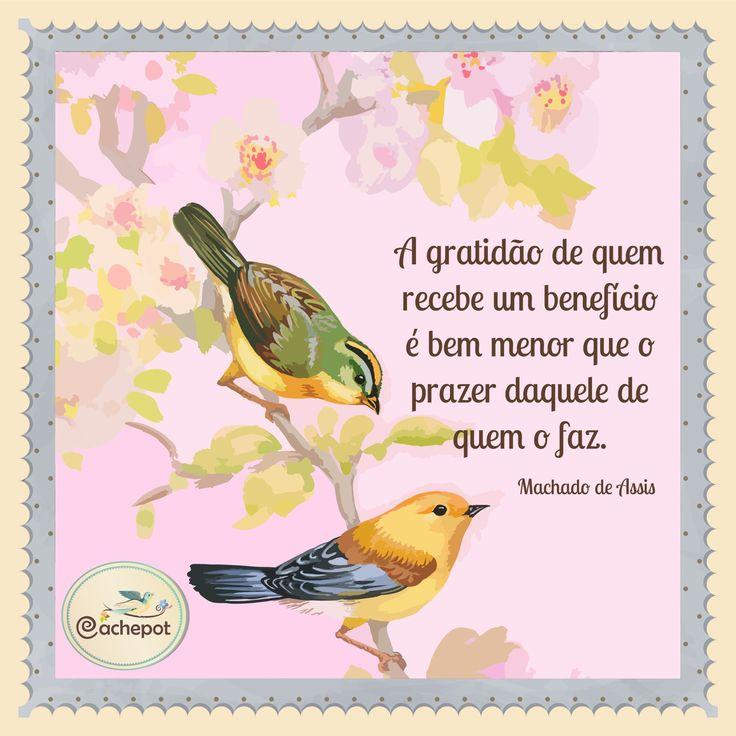 #gratidao