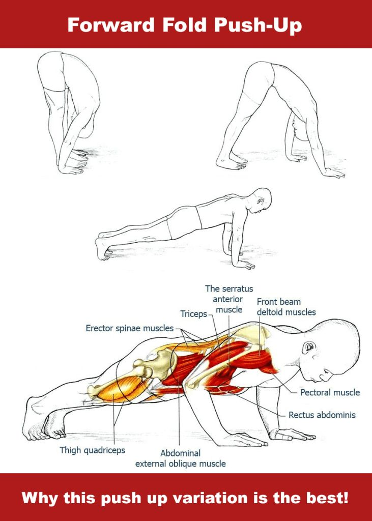 The Push-up might be the most famous upper body exercise in the world. It helps to develop strength and endura