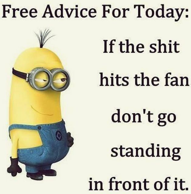 Funny Minions from Raleigh (11:46:44 PM, Tuesday 18, October 2016 PDT) – 77 pics
