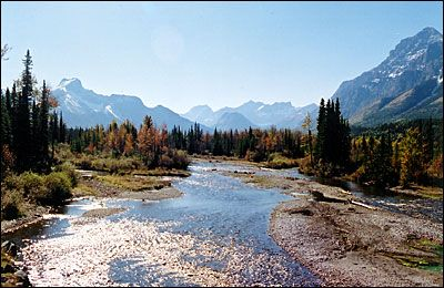 Nestled in the heart of Kananaskis It Is An Excellent Region, Kananaskis Has Something For Everybody And The Entire Family
