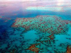 Vida a bordo en la Gran Barrera de Coral