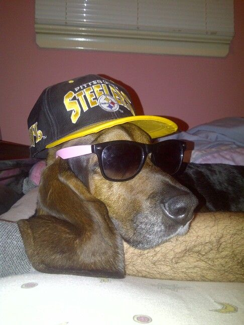 Repping the Pittsburgh steelers