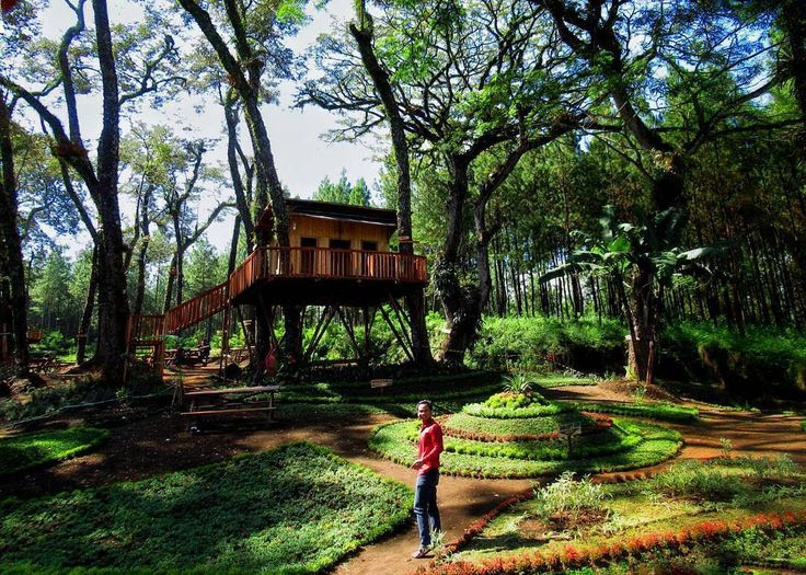 From @ahmad_anjarwicaksono . Yes di Kota Malang ada spot Rumah Pohon lagi Tepatnya Di Kampung Enam (6) terletak di Dusun Patok Picis Wajak Kab Malang  Untuk menikmati keasrian dan kesejukan tempat ini cuman Mengeluarkan Uang Parkir saja 5K. Tiket masuk/htm: feel free. Selain rumah Pohon juga ada spot Pohon Pinus yang sejuk dan seger udaranya.  Untuk menuju Lokasi bisa melalui Pasar Wajak dan silakan bertanya kepada warga setempat. Warga Wajak siap memberikan petunjuk dengan senyumnya.  Kalau…