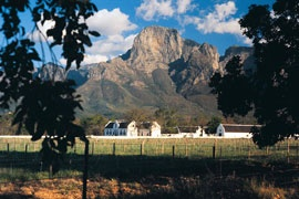 south africa, winelands