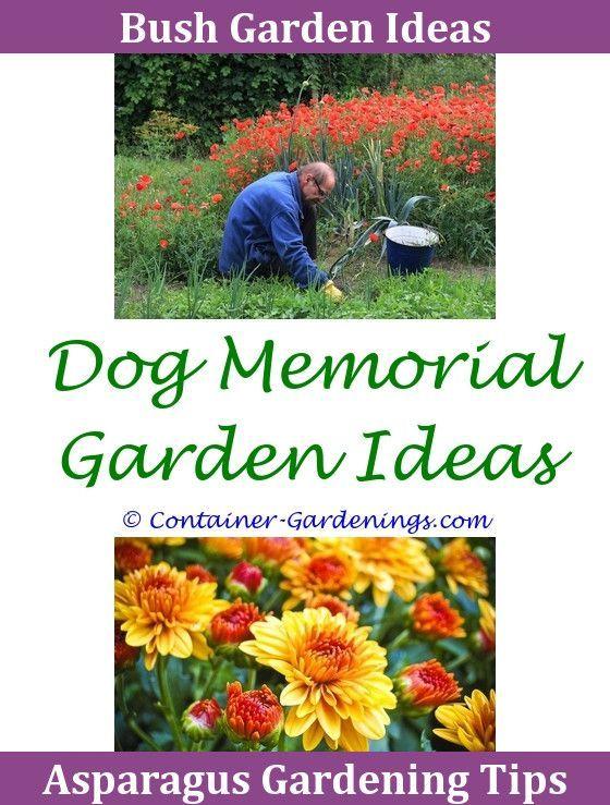 Gargen Whimsical Garden Ideas Garden Design Ideas For Shady Areas ...