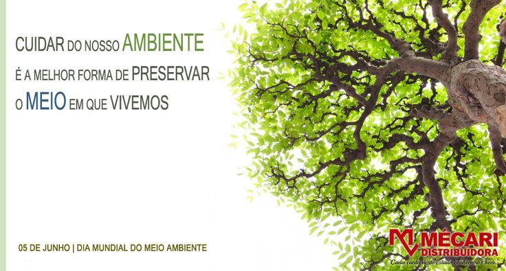 Resultado de imagem para exemplos de cartazes para o dia mundial do meio ambiente