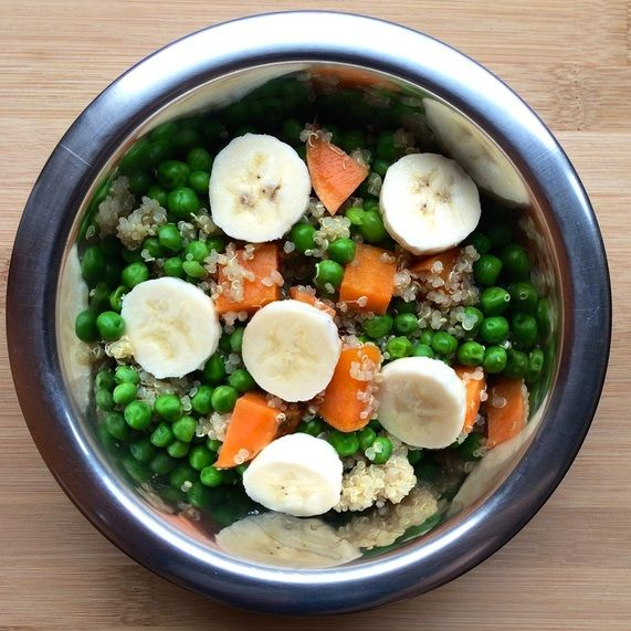 "Dog kibble alternative meals.  Try ""Combine cooked brown rice and quinoa with steamed brocoli and carrots, then mix together with two tablespoons of peanut butter for a delicious, healthy canine meal."""