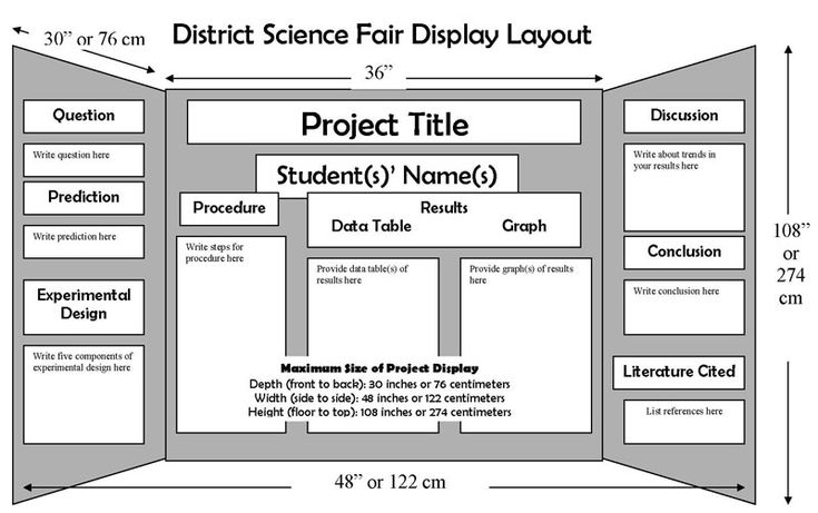 science fair display boards | Science Board Layout : CAS: Science Explorations
