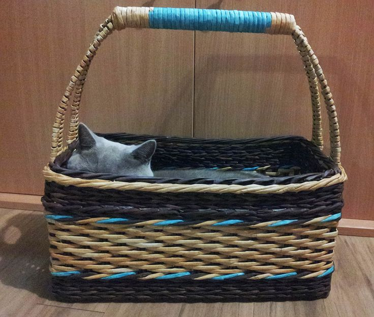 The cat really likes that wicker basket.