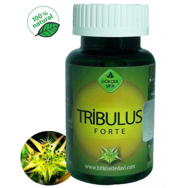 Tribulus Forte - Doğal Tedavi - İbrahim Gökçek - Alternatif Tıp - Bitkisel Ürünler - İksir - Alovera - Bitkisel Sağlık Ürünleri - Şifalı Bitkiler - Bitkisel Setler - Bitkisel İlaçlar - Herbalist İlaç Değil Bitkisel Gıda Takviyesidir. www.alternatiftip.com.tr