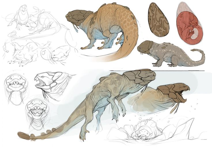 Draco Bullitis - the Bubble Dragon - Illustration Project - The Rookies