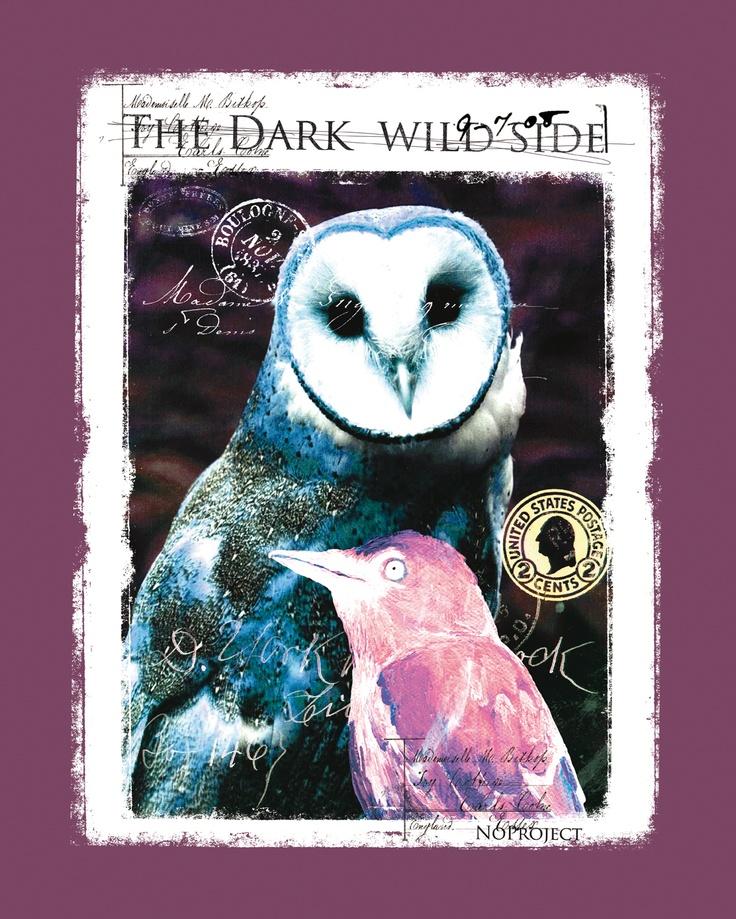 The dark wild side