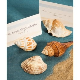 Natural Selections Collection Shell Design Placecard Holders