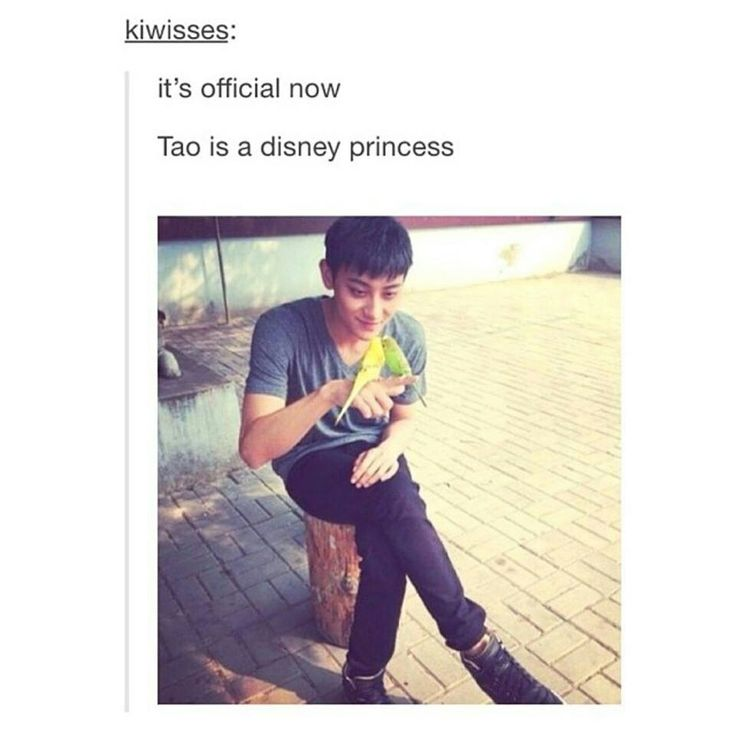 Tao is such a cutie,on the outside he looks like a scary Kung fu panda but on the inside he is a Disney princess lol