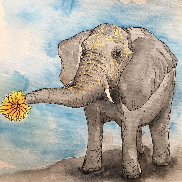 Watercolor elephant, india elephant head pattern painting, elephant with flower, blue skies precious elephant