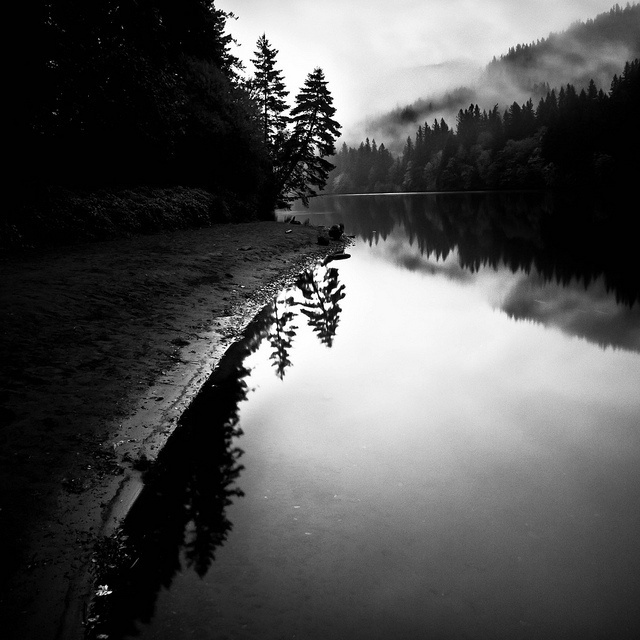Black and white landscapes by thespeak find this pin and more on photography medium format
