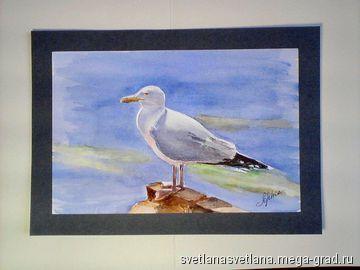 Чайка 1 - Живопись акварельными красками, картины с изображением животных. МегаГрад - главный ресурс мастеров и художников