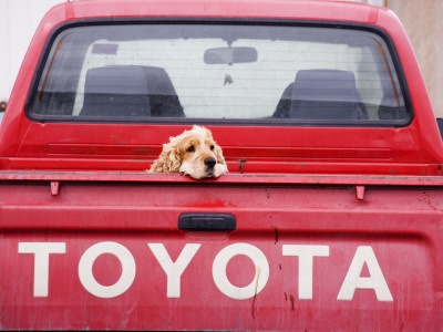 24 Best Toyota Logos Advertising Signage Images On