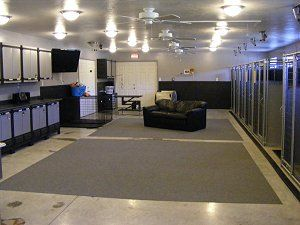 Customer Dog Kennels Photos Dog Kennel Reviews And Comments About