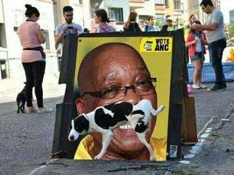 Jokes only South Africans will understand  #Zuma#jokes#africa