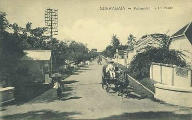Foto suasana Daerah Palmlaan atau Keputran Lor tahun 1910