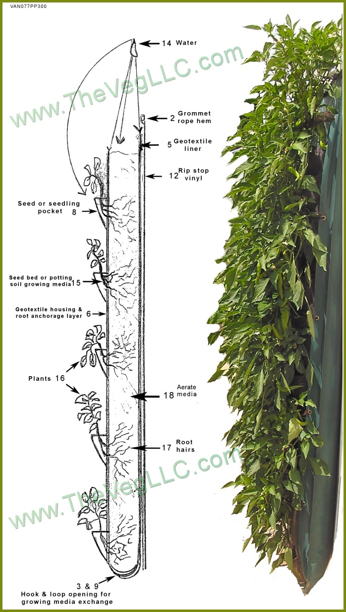 130 best Vertical Garden images on Pinterest Vertical gardens
