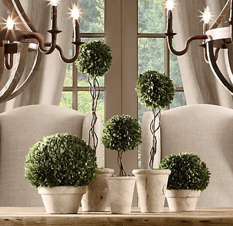 Restoration Hardware Topiaries - how to make your own
