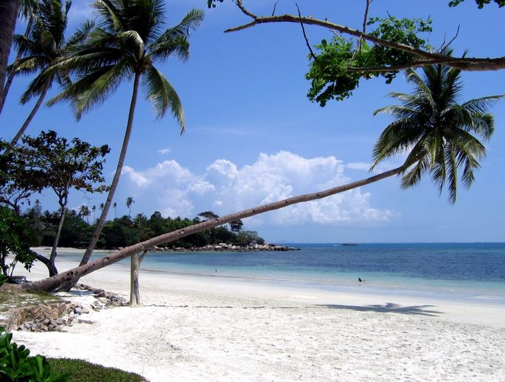bintan island  | Capital : Bandar Seri Bentan