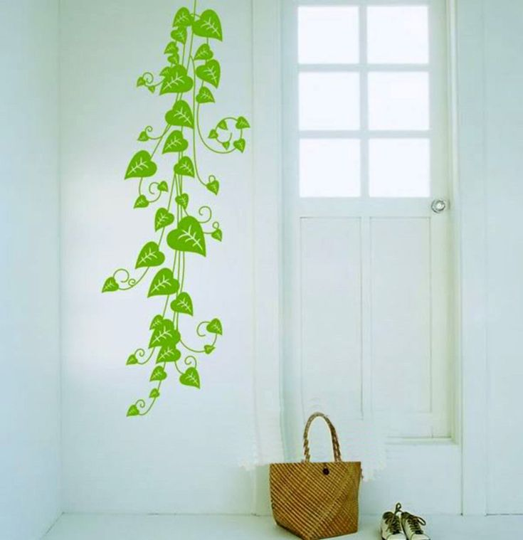 Decals Design 'Pothos Vine' Wall Sticker