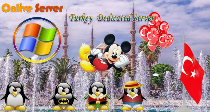 Turkey VPS Server stands for Virtual Private Server, Internet hosting services sell a virtual machine as a service which has its own operating system.