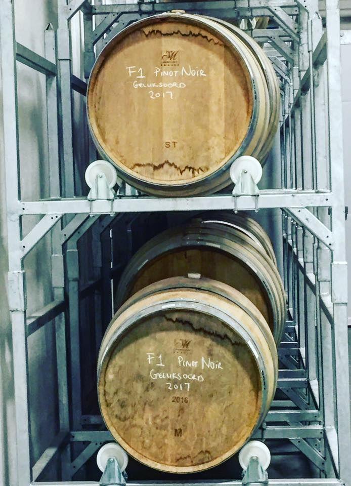 Wine maturing in Wine Barrels at Hazendal Wine Estate, Stellenbosch