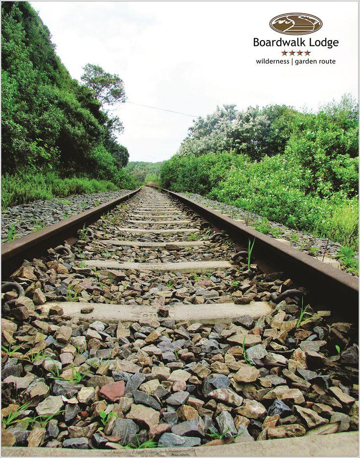Wanderlust for the explorer  Wilderness Railway