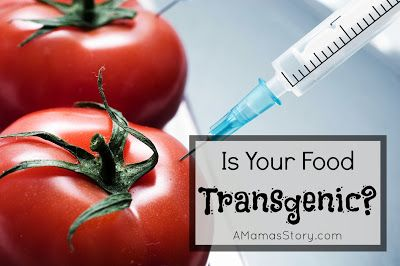A Mama's Story: Is Your Food Transgenic?