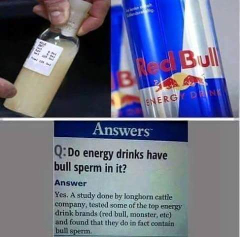Confirmado: Urina e sêmen do Touro são os ingredientes secretos usados no Red Bull e outras bebidas energéticas! ~ Sempre Questione