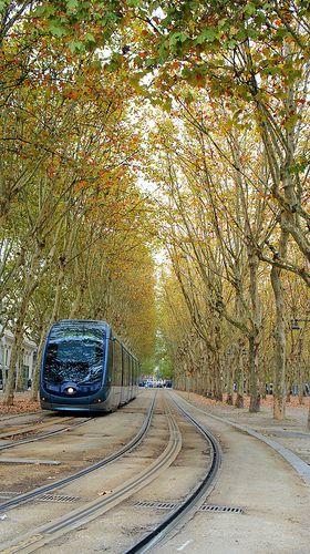 Bordeaux (FR) tramway going through park