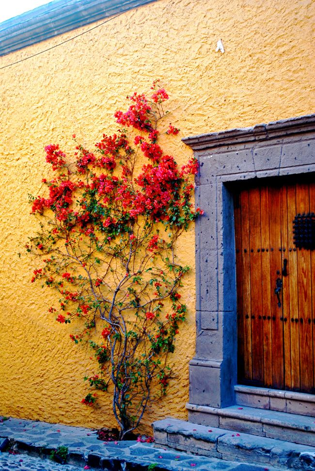 Mexican door in Guadalajara