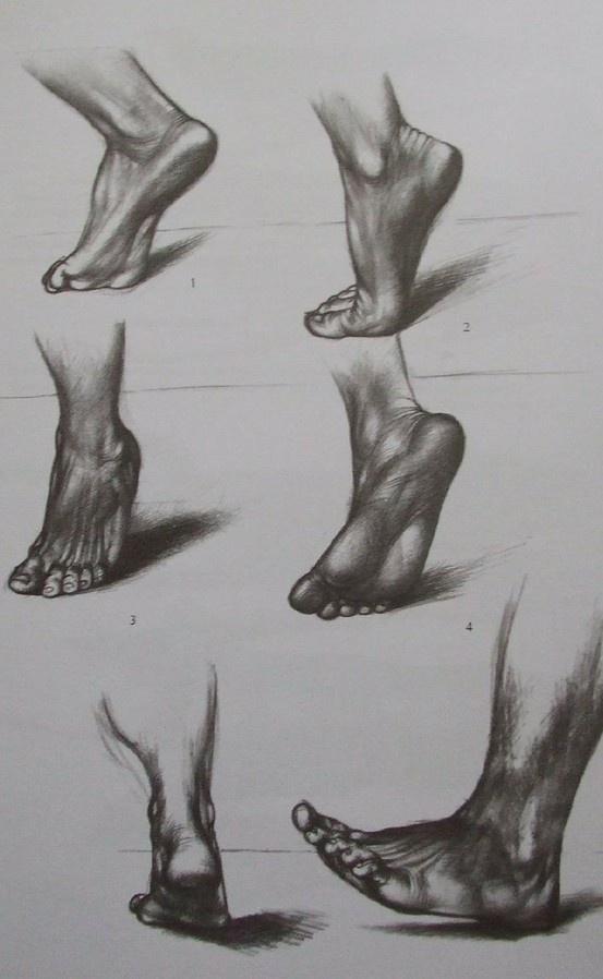 Jenő Barcsay - Művészeti anatómia (~Artistic anatomy)