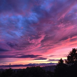 Head to The Hill for a phenomenal photo op. | 28 Unexpectedly Awesome Things To Do In Seattle