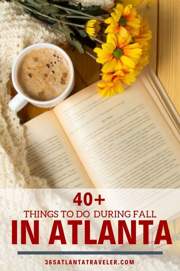 40 Freaking Fabulous Ways To Cozy Up To Fall In Around Atlanta It S Fall Ya Ll Looking For The Best Of The Best T Georgia Vacation Atlanta Travel Atlanta