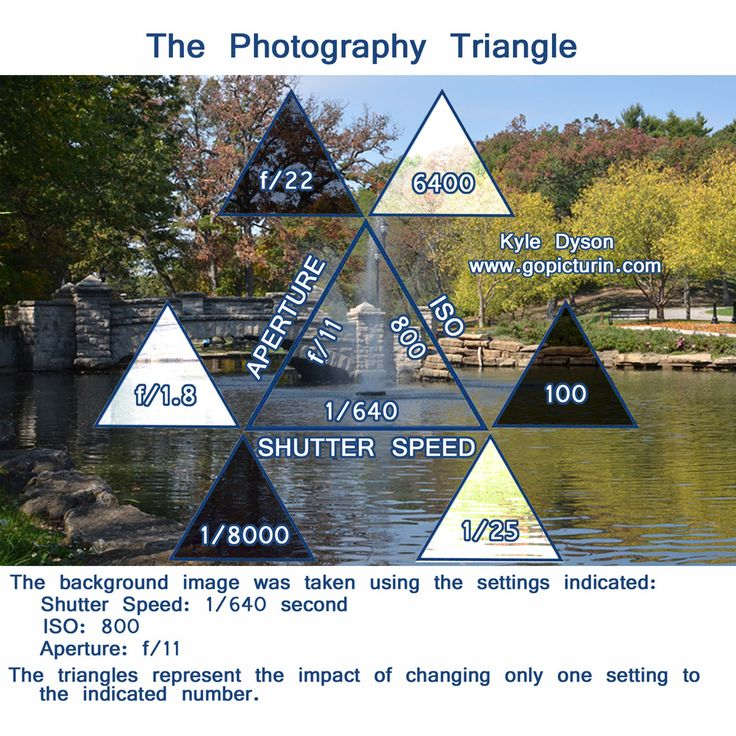 The Photography Triangle