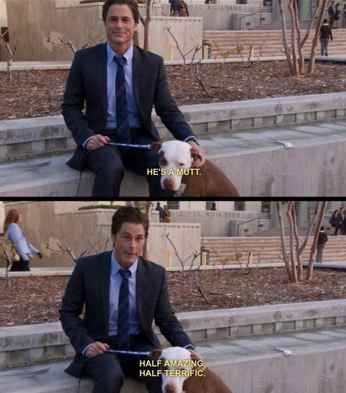 chris traeger. what i should start saying about my dog