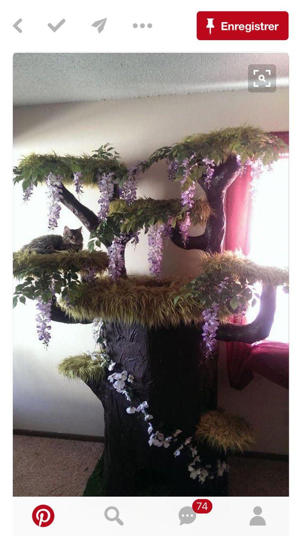 A cat TREE!
