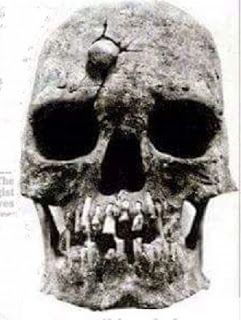 The Encyclopedia of Ancient Giants (Nephilim) in North America: Goliath's Giant Skull Discovered Near Jerusalem