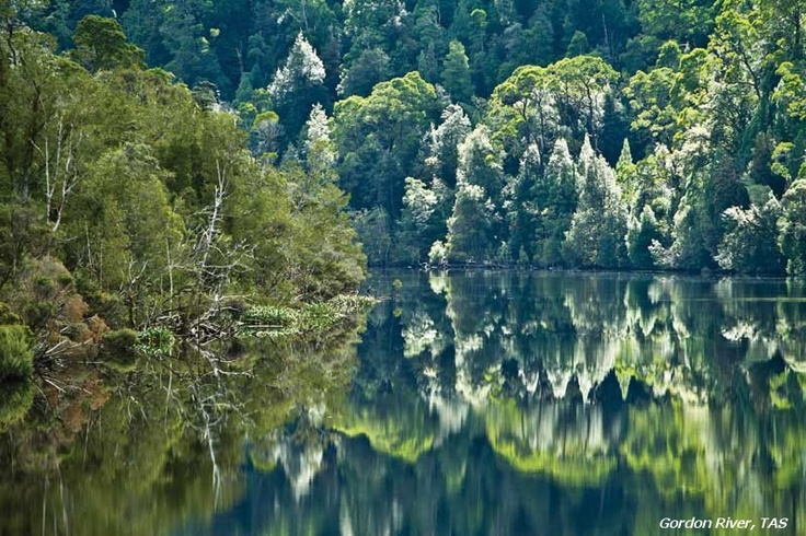 The Franklin Gordon Wild Rivers National Park in Tasmania's South West.